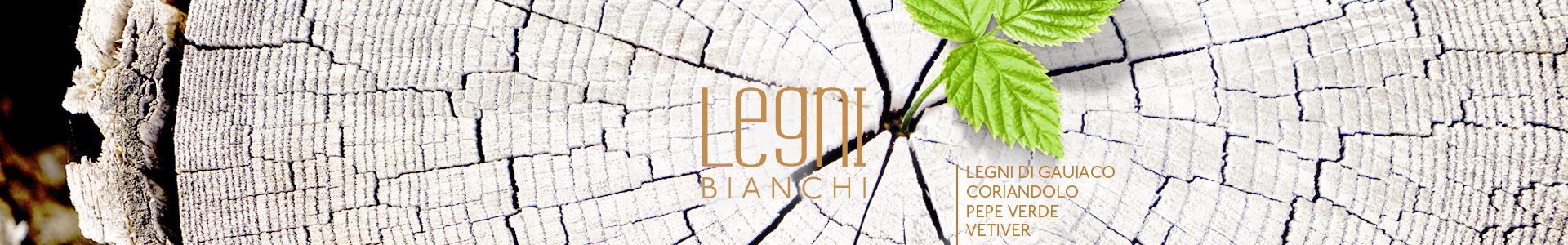 Legni Bianchi