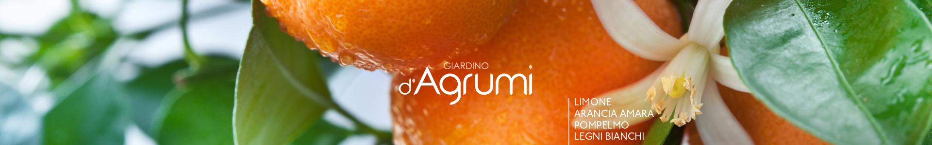 Giardino d'Agrumi